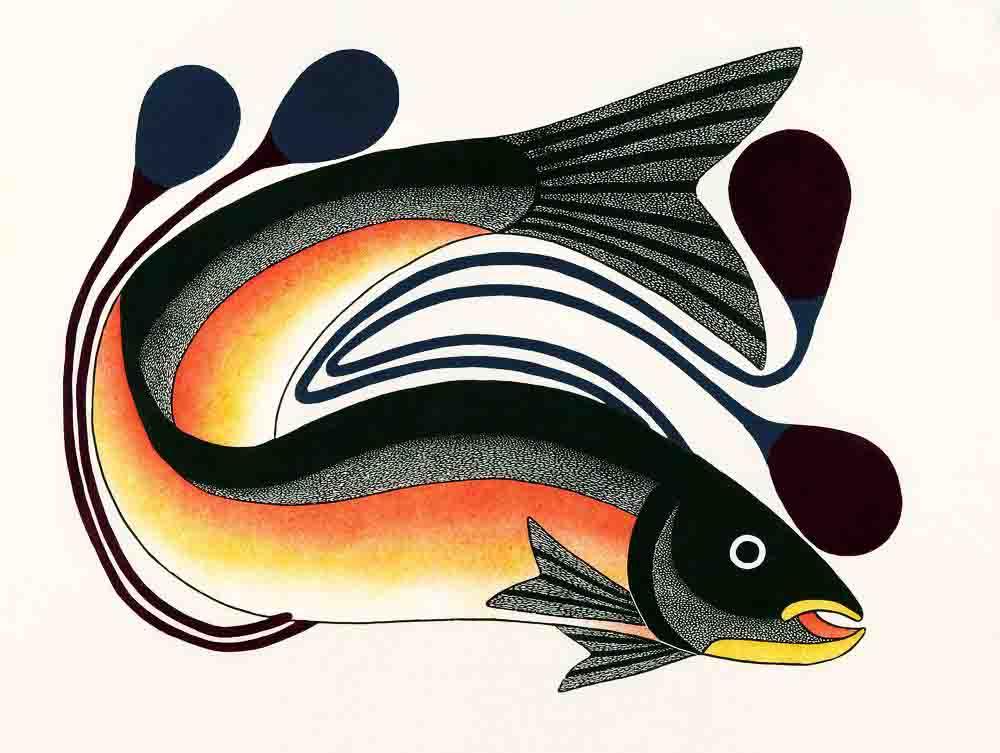 AhevakKenojuakIqalutsiavakBeautifulFish